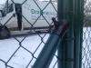 vzpěra u brány
