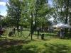 Branka v oplocení - psí park Pardubice